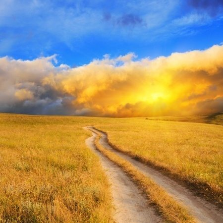 How to Move through Transitions with Ease and Grace