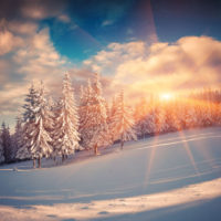 A Reflection Practice for the Winter Solstice by Dr. Debra Reble